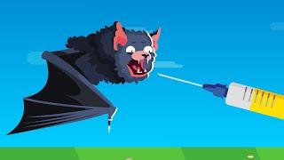 Scientists Discover 6 New Coronaviruses In Bats
