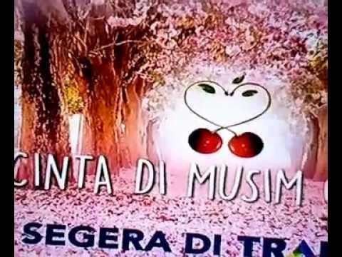 ost. cinta di musim cery versi indonesia