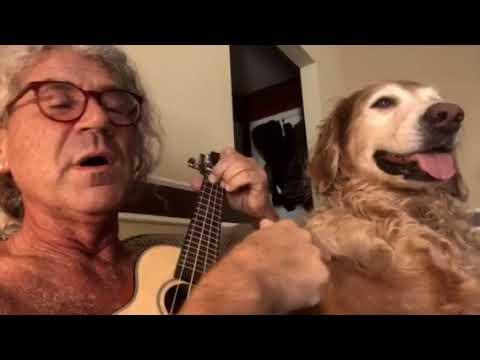 Happy trails - Roy Rogers ukulele cover