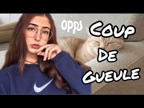 ARRÊTEZ DE DONNER DES CROQUETTES À VOS CHATS !!!