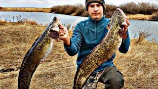 Рыбалка на НАЛИМА С Ночёвкой на Реке поздней осенью