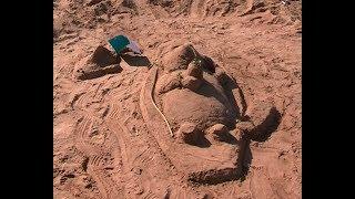 Эчпочмаки, бобры и черепахи – из песка