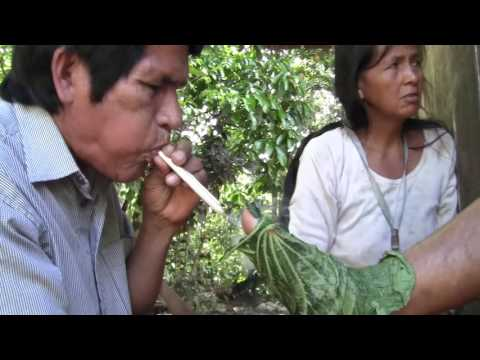 Spirit of Nature. Lessons from the Shuar in Ecuador - Episode 1