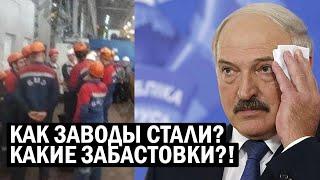 СРОЧНО! Против Лукашенко начали ЗАБАСТОВКУ ЗАВОДЫ - Автозаки НАГОТОВЕ! - новости
