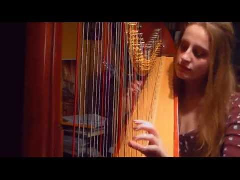 Aladdin  A Whole New World Harp