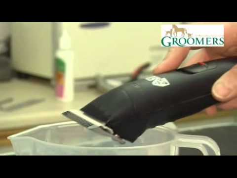 Groomers Dog Grooming Tips: Guide To Maintaining Equipment
