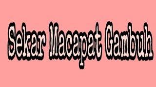 Gambar cover SEKAR MACAPAT GAMBUH