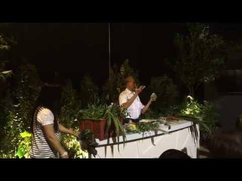 Singapore Garden Festival 2014 - Herbal Plants