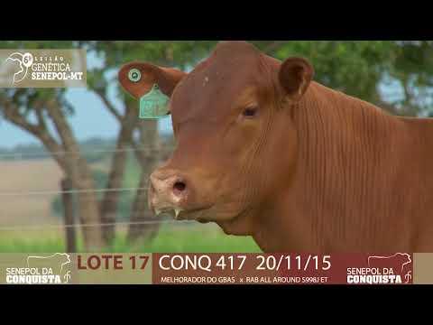 LOTE 17 CONQ 417