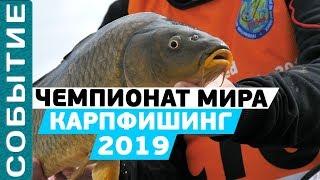 Чемпионат мира по карпфишингу 2019! Всемирные рыболовные игры в #ЮАР!