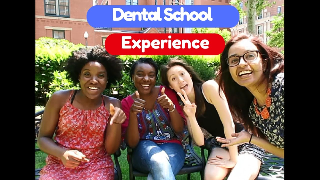 How To Get Into Dental School | The Dental Experience -Part 1 ...