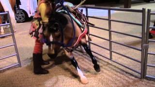 Breyer Horse Cutting Part 1