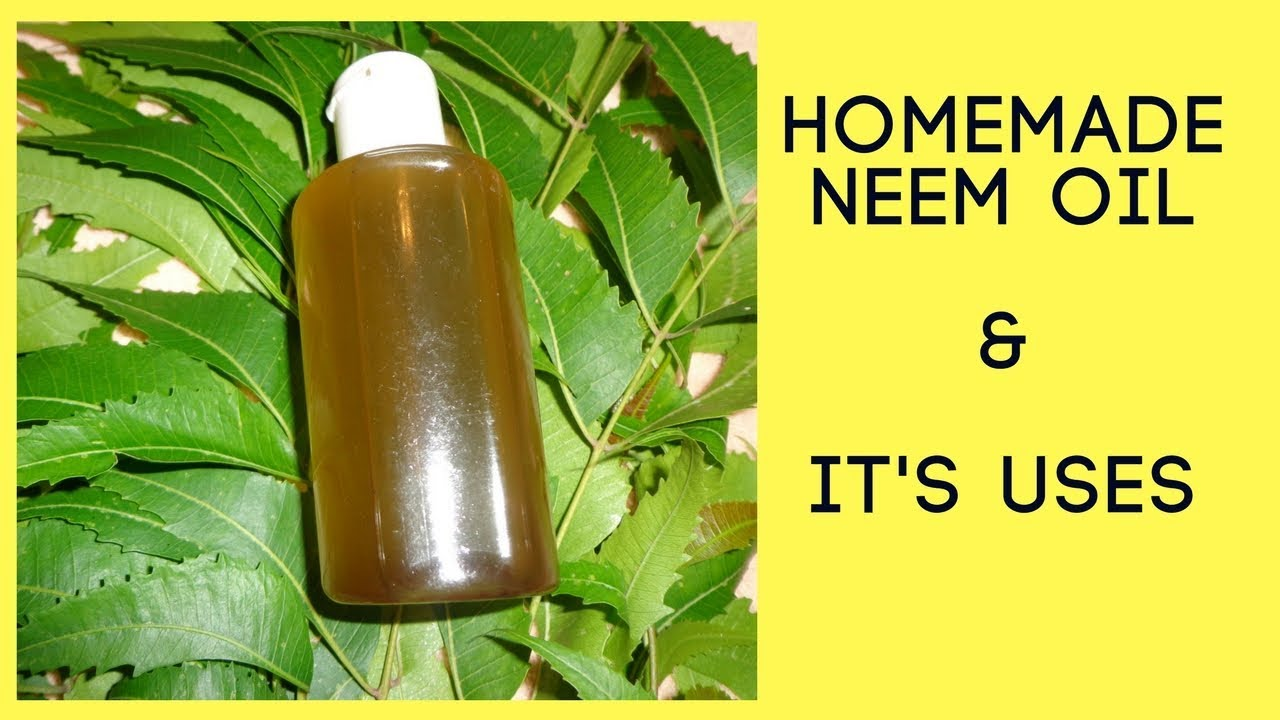 diy homemade neem oil and its uses neem oil for hair fall and hair growth stay gorgeous. Black Bedroom Furniture Sets. Home Design Ideas