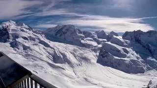 Zermatt Birds