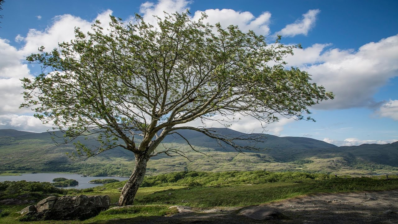 Landbrugere dating site scotland landdistrikterne dating sites australien