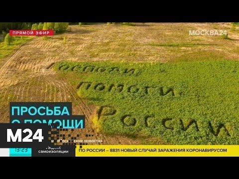 """На поле в Куркине заметили надпись """"Господи, помоги России"""" - Москва 24"""