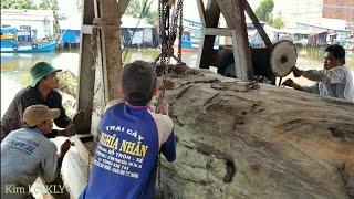 4 Người Sử lý khúc gỗ nặng gần 15 tấn kẹt trên đường rây trại cưa,quá khó khăn.