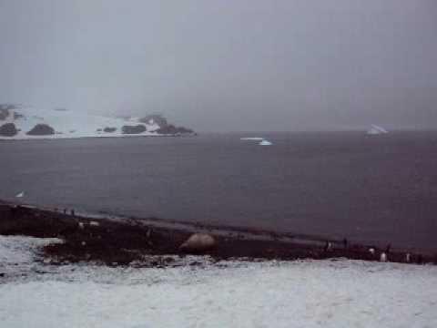 Aitcho Island, Antarctica,November 2009