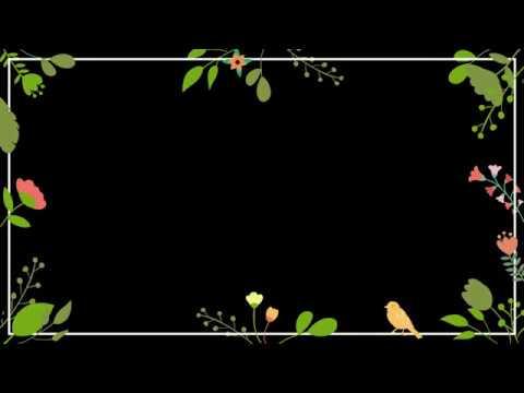 Spring Stock Footage, Frame, Butterflies, Green Screen