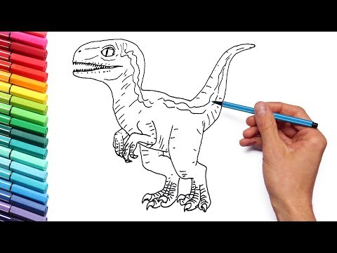 drawing and coloring baby raptor blue from jurassic world dinosaur color pages for kids youtube drawing and coloring baby raptor blue