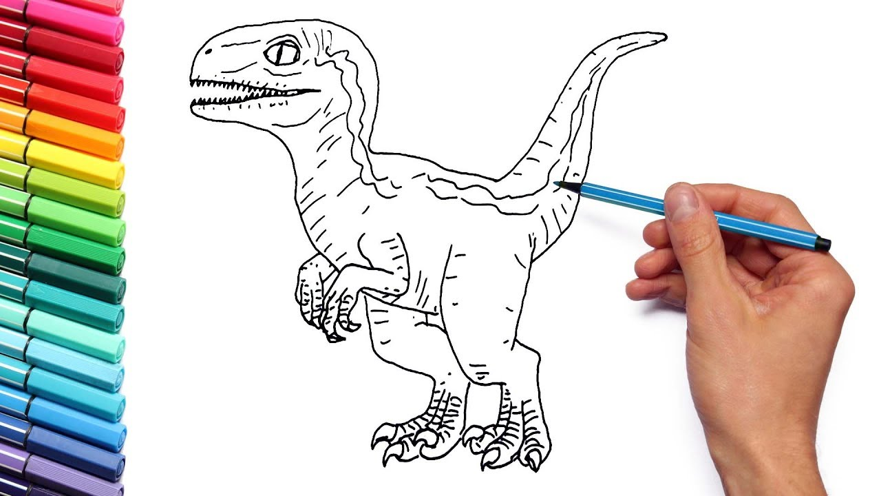 Drawing and Coloring Baby Raptor Blue From Jurassic World - Dinosaur Color  Pages for Kids