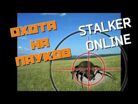 сталкер онлайн охота на пауков эти сверхгиганты делили
