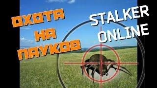 работы Зураба сталкер онлайн охота на пауков только Женский день