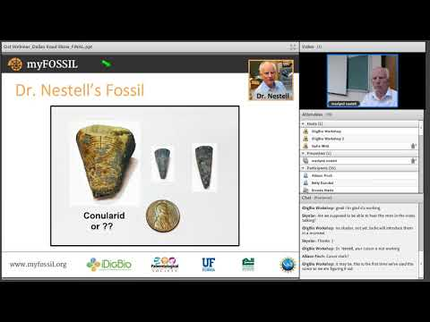 FOSSIL Roadshow Webinar 2-  Pennsylvanian Fossils of North T