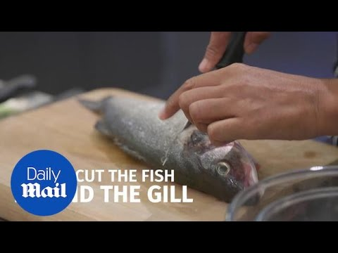 MasterChef's Monica Galetti Shows How To Properly Fillet A Fish - Daily Mail