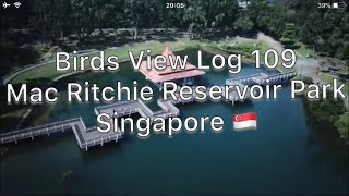 Birds View Log 109: Mac Ritchie Reservoir Park Singapore 🇸🇬by Mavic Pro / シンガポールマクリッチー貯水池公園で空撮。