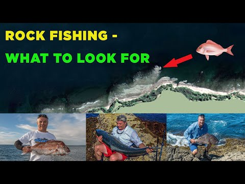 HOW TO FIND A GOOD ROCK FISHING SPOT FOR SNAPPER, KINGFISH, KAHAWAI, TREVALLY