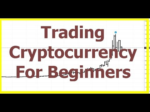 Trading cryptocurrency for beginners reddit