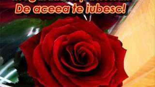 pentru iubirea mea dulce si scumpa......te iubesc..