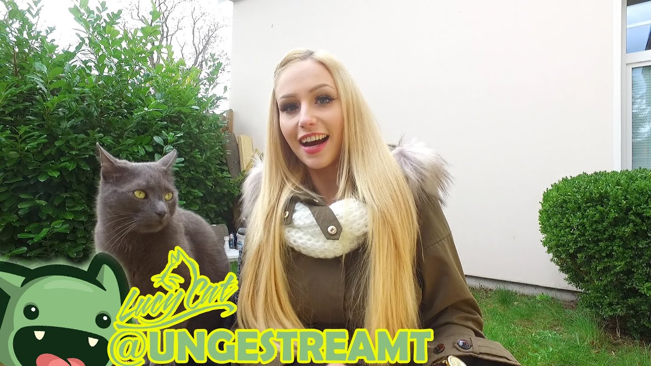 Lucy Cat Live Stream
