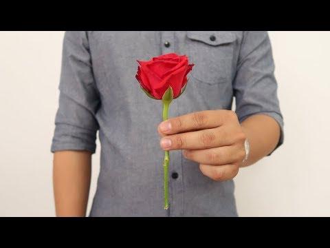 Wow! 7 Trik Sulap Mudah