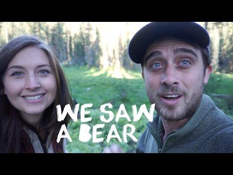 California Travel Vlog - We saw a black bear in Sequioa National Park