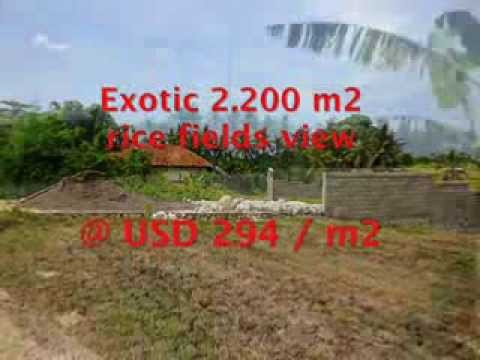 Land for sale in Bali, outstanding view in Northern Canggu Bali -- TJCG128