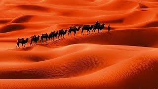 Сахара Песня на стихи Гумилёва
