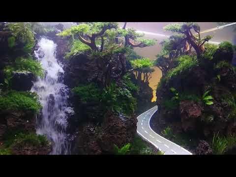 Aquascape Tema Air Terjun Jalan Raya Dalam Aquarium Youtube