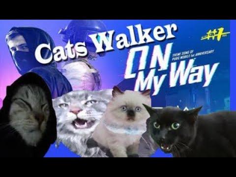 alan-walker---on-my-way-(cats/kucing-version)