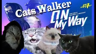 Top Hits -  Alan Walker On My Way Cats Kucing Version