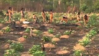 Repeat youtube video Tribo Kamayurá do Alto Xingu