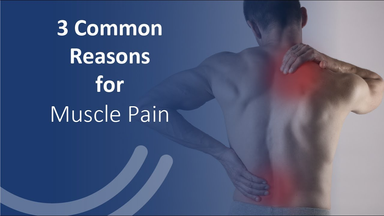 3 Common reasons for Muscle Pain & How to get rid of Muscle pain?