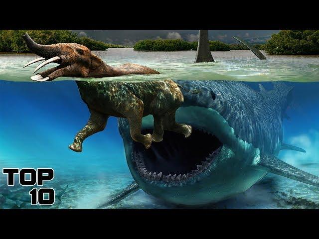 Top 10 Extinct Animals We Shouldn't Bring Back To Life - Part 3