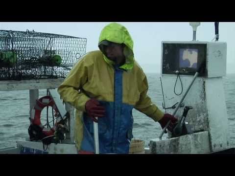 Crabbing - Commercial Fishing On The Outer Banks