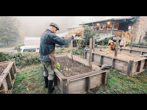 More Abundance with less Work | A Permaculture Homestead