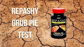 Repashy Grub Pie für Leopardgeckos