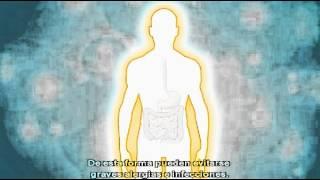 Probiotic lrnetwork