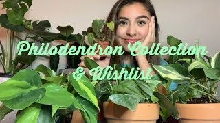 Philodendron Collection & Wishlist