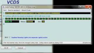 Hoe Te Activeren Overdag Runing Lichten - Octavia II 2010 (Facelift)